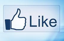 Facebook Fans Service