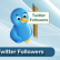 Twitter Followers Services
